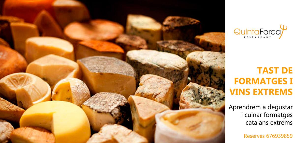qf-formatges-vins